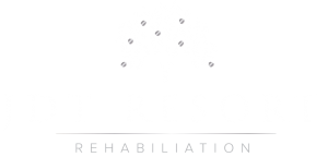 jdt-resort-logo